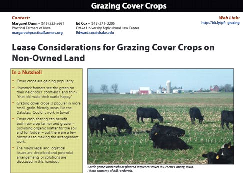 Grazing-Cover-Crops